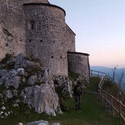 Balcanis Room