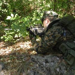 Hunting Tintorera